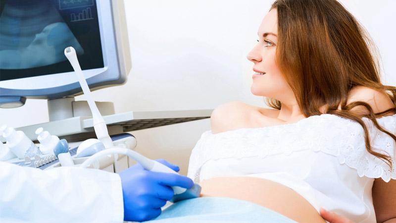 porcentaje de éxito inseminación artificial