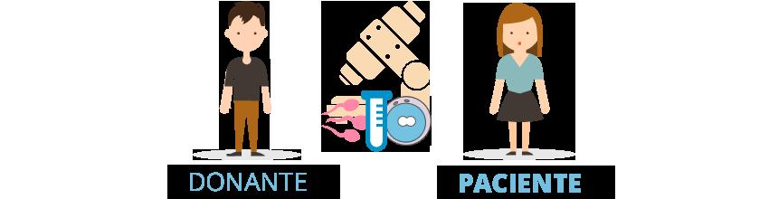 fecundación in vitro con semen de donante