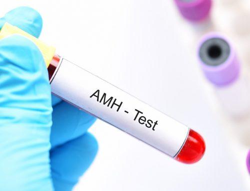 Hormona antimülleriana ¿Qué es y qué influencia tiene en la fertilidad femenina?