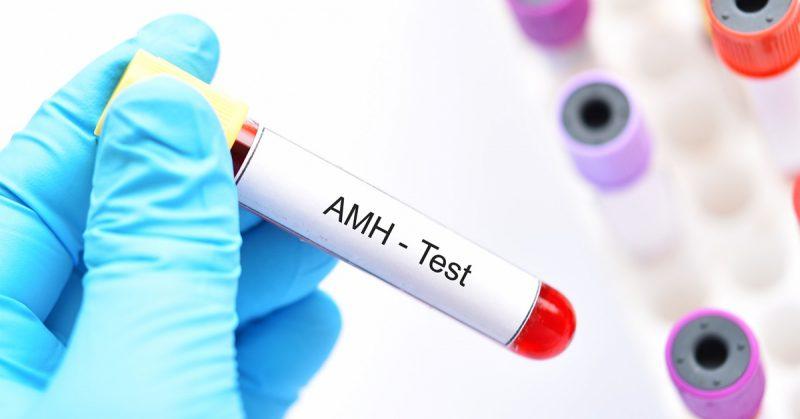 qué es la hormona antimülleriana