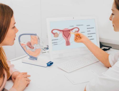 Mitos y verdades sobre la fertilidad