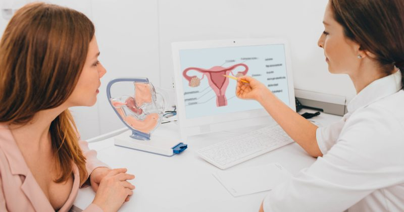 mitos y verdades fertilidad