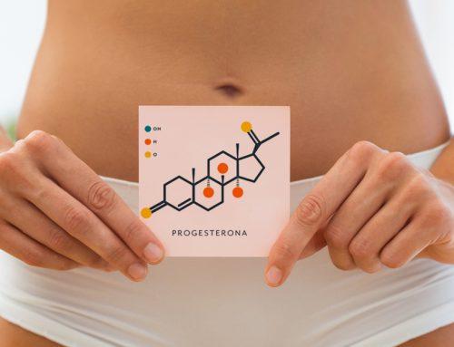 Cuál es el papel de la progesterona en la reproducción